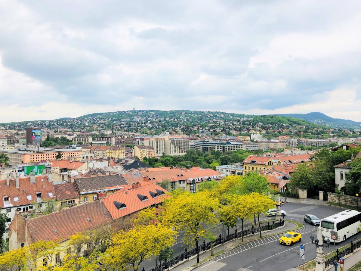 Вид на Будапешт / Фото Вероника Кордон