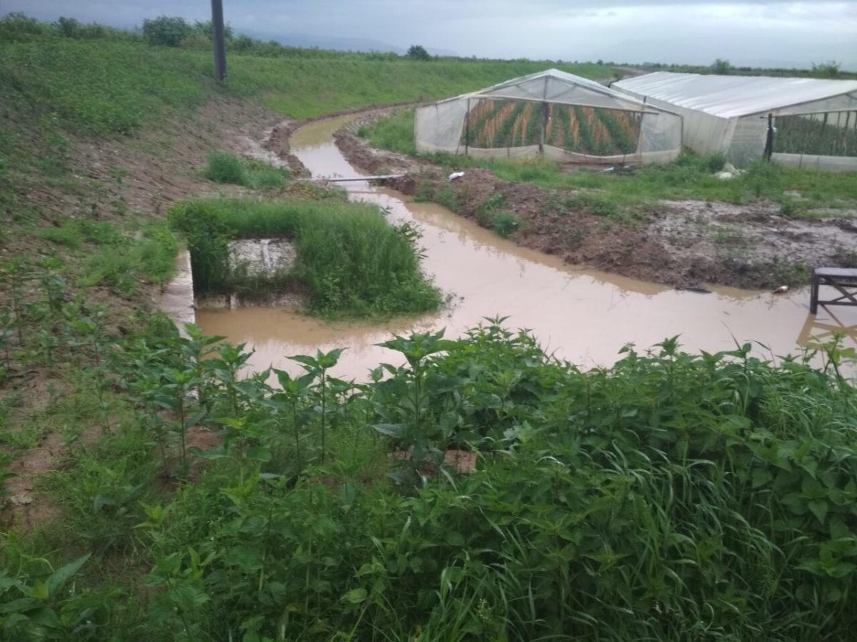 Дожди затопили Закарпатье / ГСЧС