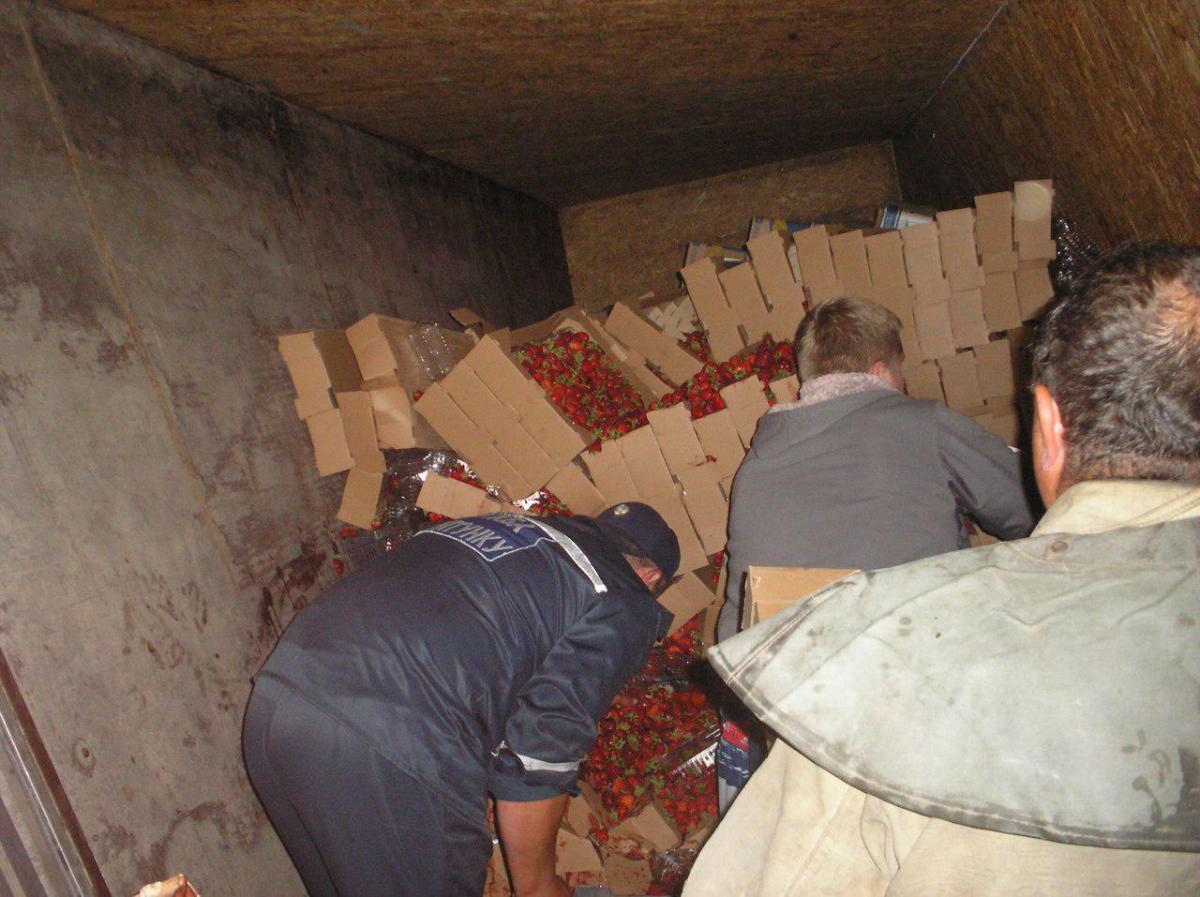 На Запоріжжі перевернулася фура з 5 т полуниці / фото zp.dsns.gov.ua