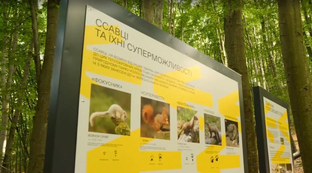 Во время путешествия по экотропе длиной 3 км можно будет узнать о жителяхГолосеевского леса / скриншот