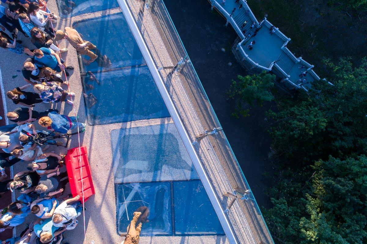 Скляні елементи на пішохідно-велосипедному мосту в Києві знову доступні / фото Інформатор