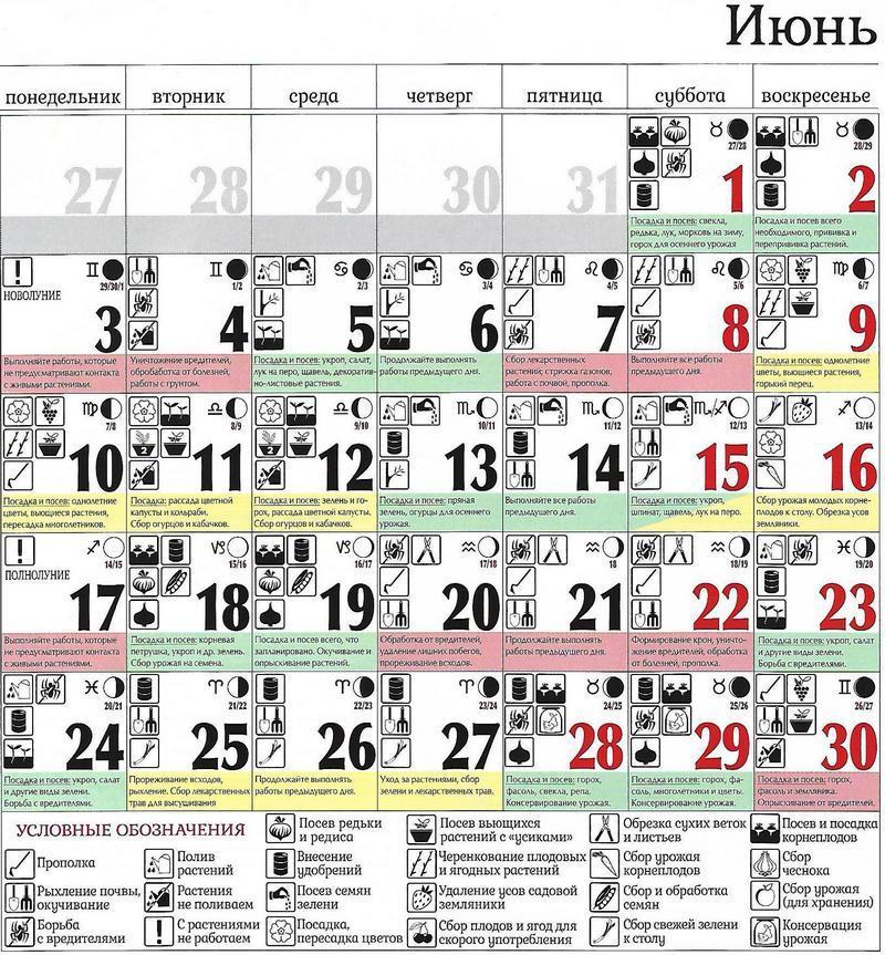 Лунный календарь на июнь 2019 / vedmochka.net