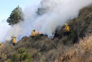 Через дим від лісових пожеж в Мехіко оголосили режим надзвичайної ситуації
