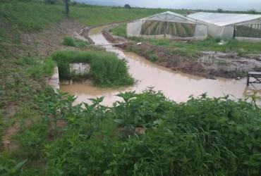 Потоп на Закарпатті: у басейні Ужа рівень води перевищив історичний максимум