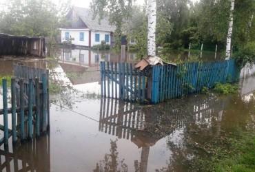 На Житомирщине из-за дождей и подъема уровня грунтовых вод есть случаи подтопления домовладений и автодорог