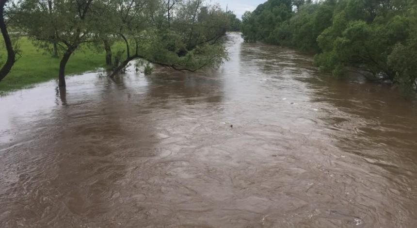 Повінь на Закарпатті: рятувальники шукають п'ятикласника, якого змило у річку та віднесло течією