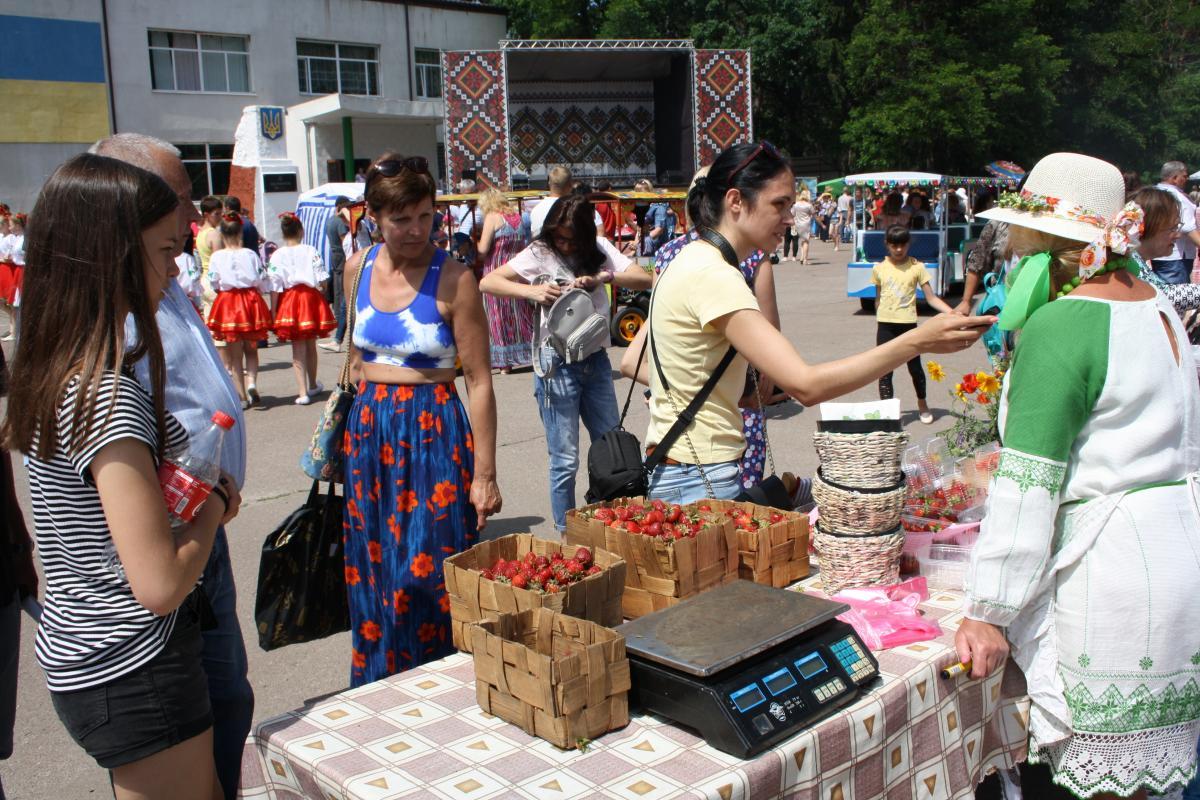 Посетители фестиваля могут не только бесплатно есть клубнику, но и принять участие в мастер-классах / фото УНИАН