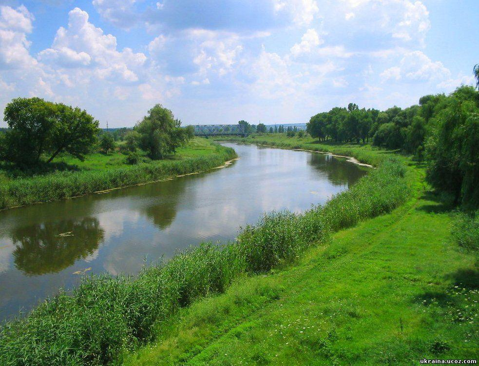 Химикаты в реку попали из машины / фото ukraina.ucoz.com