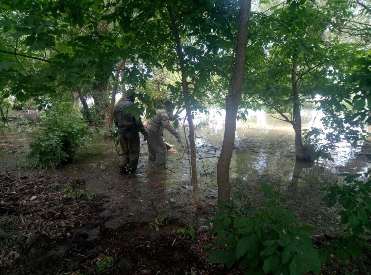 Тіло було за два метри від берега / фото od.dsns.gov.ua