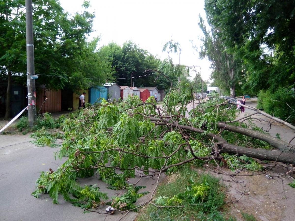 На Днепропетровщине бушевала непогода / ГУ ГЧСЧС в Днепропетровской области
