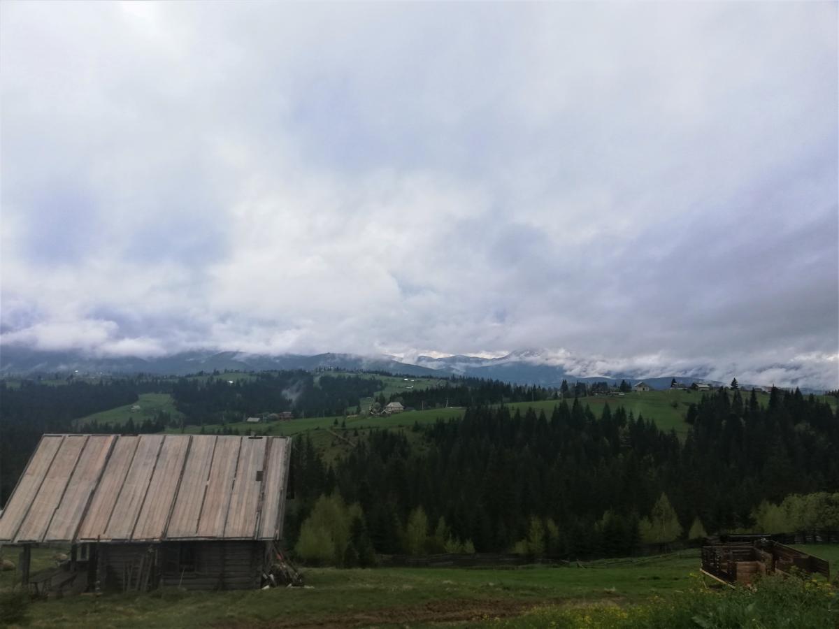 Краєвиди з полонини Перці біля Яблуниці / Фото Марина Григоренко