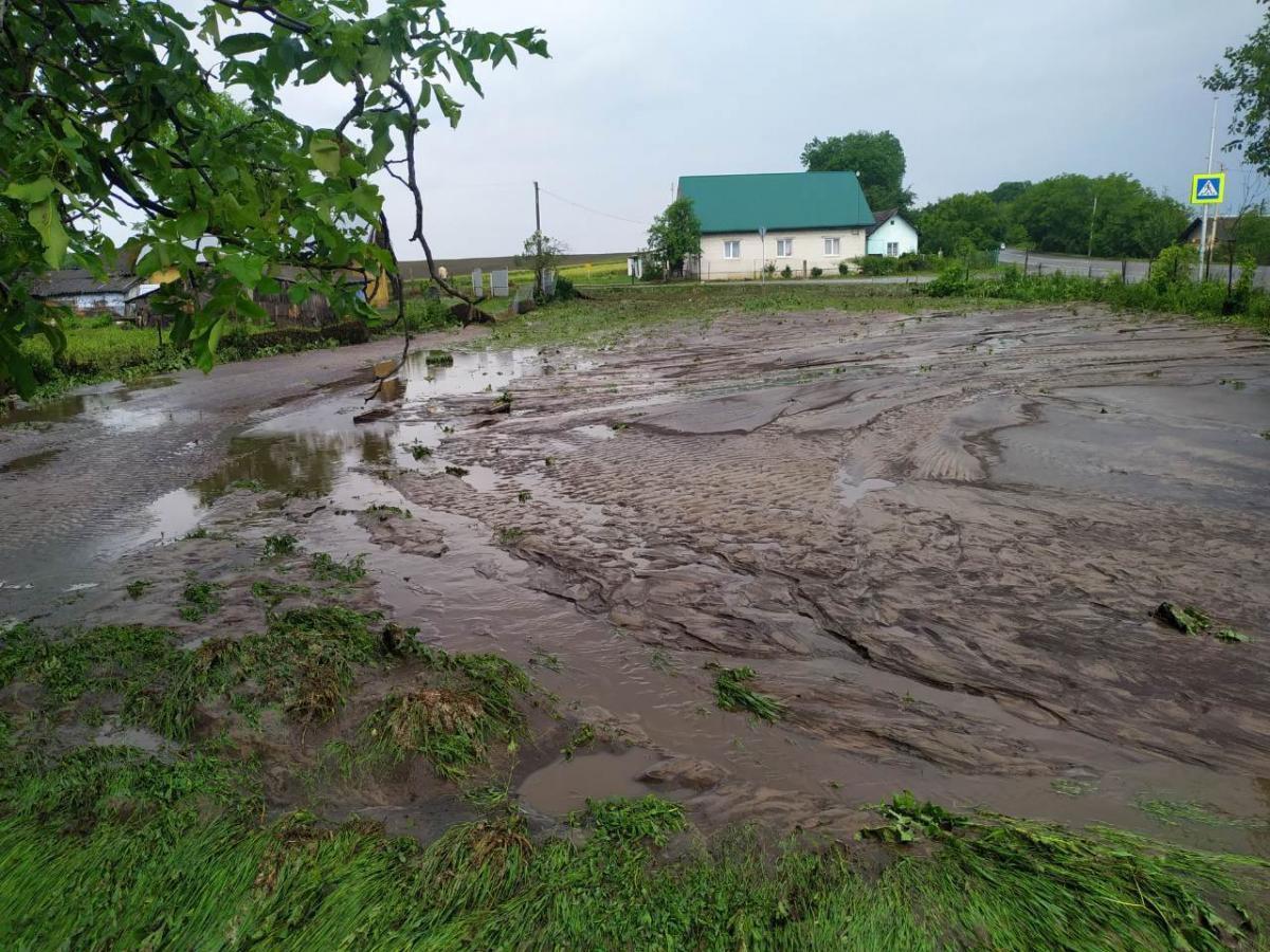 На Львіввщині затоплены десятков дворов / ГУ ГСЧС Украины во Львовской области