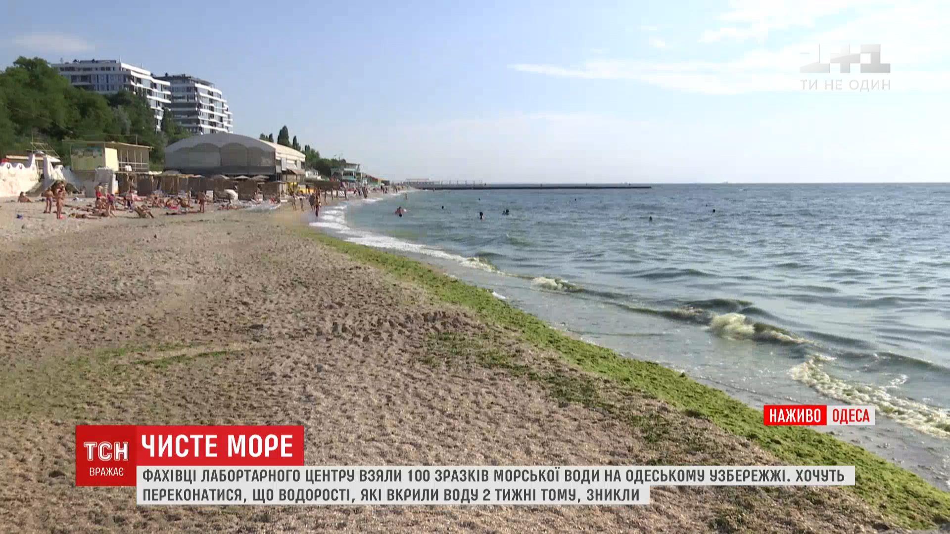 Морская вода на одесских пляжах уже чистая и прозрачная / скриншот