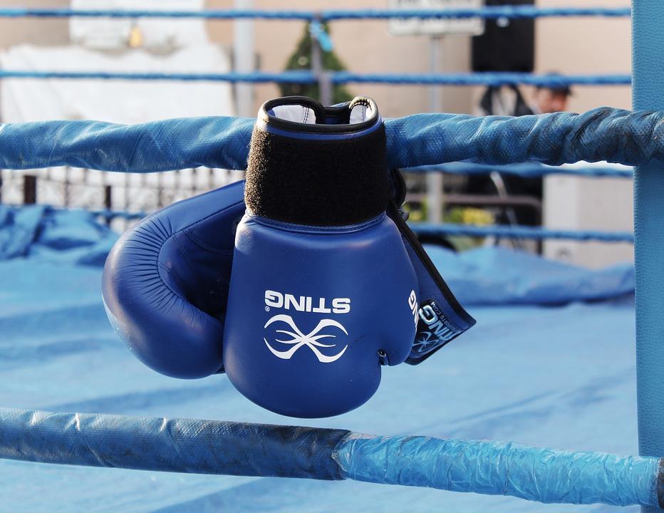 Фаворов хочет драться с Насаликом по правилам классического бокса / Pixabay