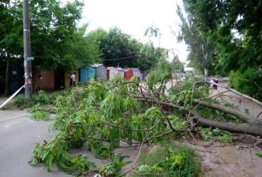 Негода на Дніпропетровщині: дощі затопили вулиці, а вітер повалив рекламні щити (відео)