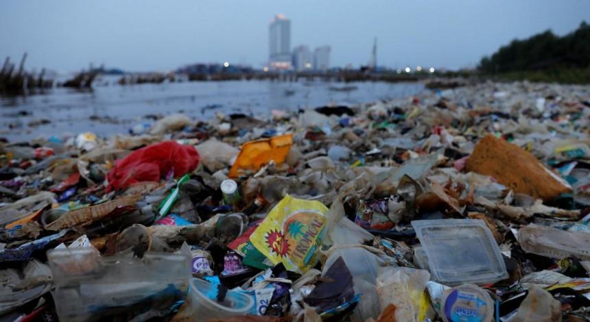 Штрафы за выброс мусора в лесу и на обочине могут вырасти в 8-10 раз