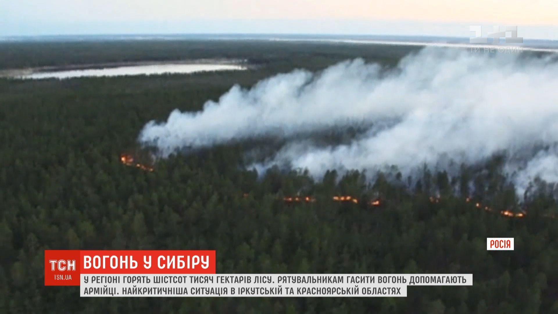 На данный момент зафиксировано 80 очагов возгораний / скриншот