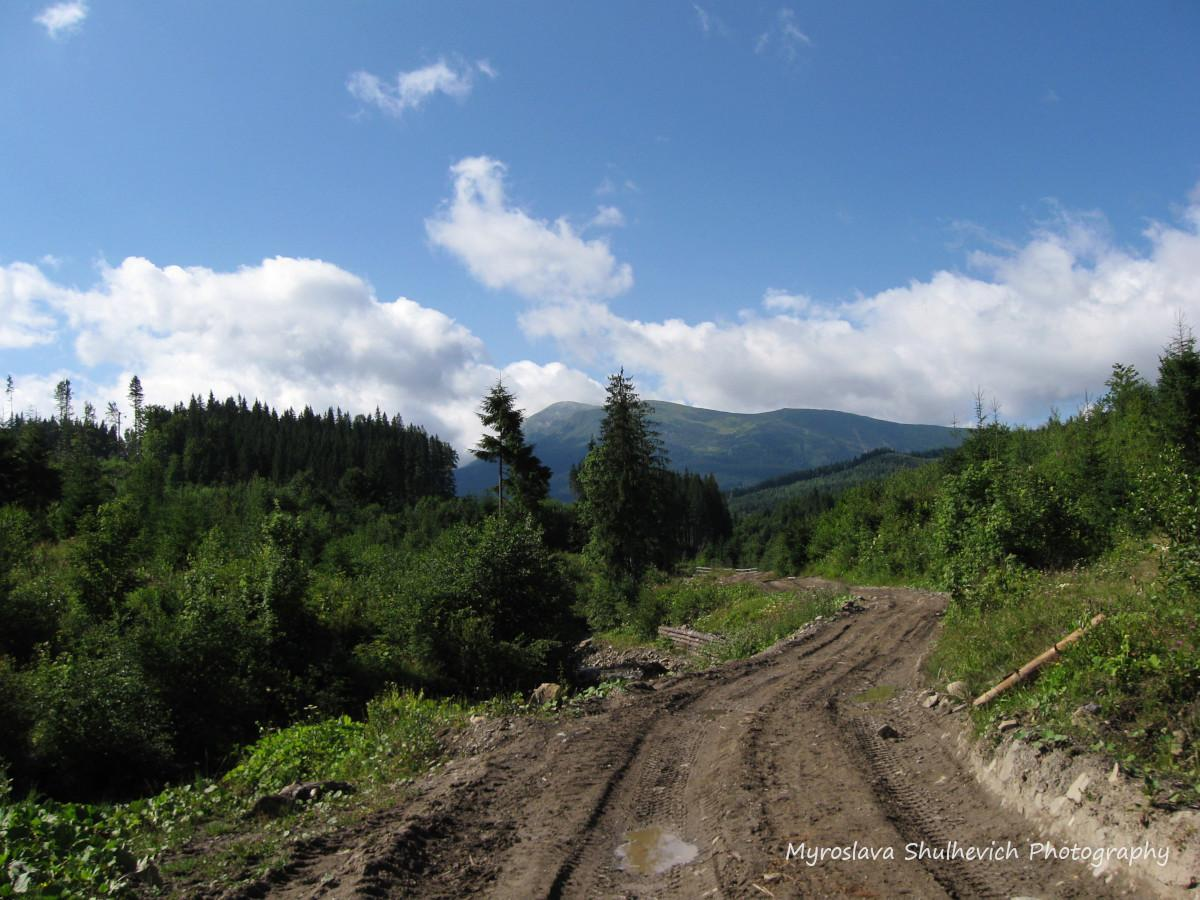 Дорога на Петрос з Лазещини / фото Myroslava Shulhevich