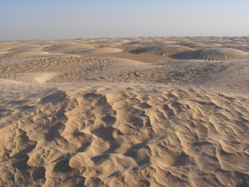 Пустеля Сахара була морем з велетенськими істотами / Flickr/Simonsezyo