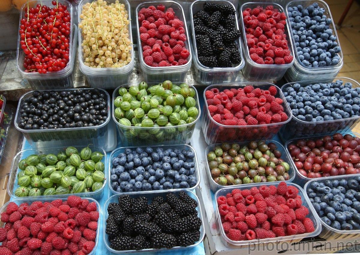 Конкуренция на рынке более привычных для Украины ягод - клубники, малины или вишни - очень высока / фото УНИАН