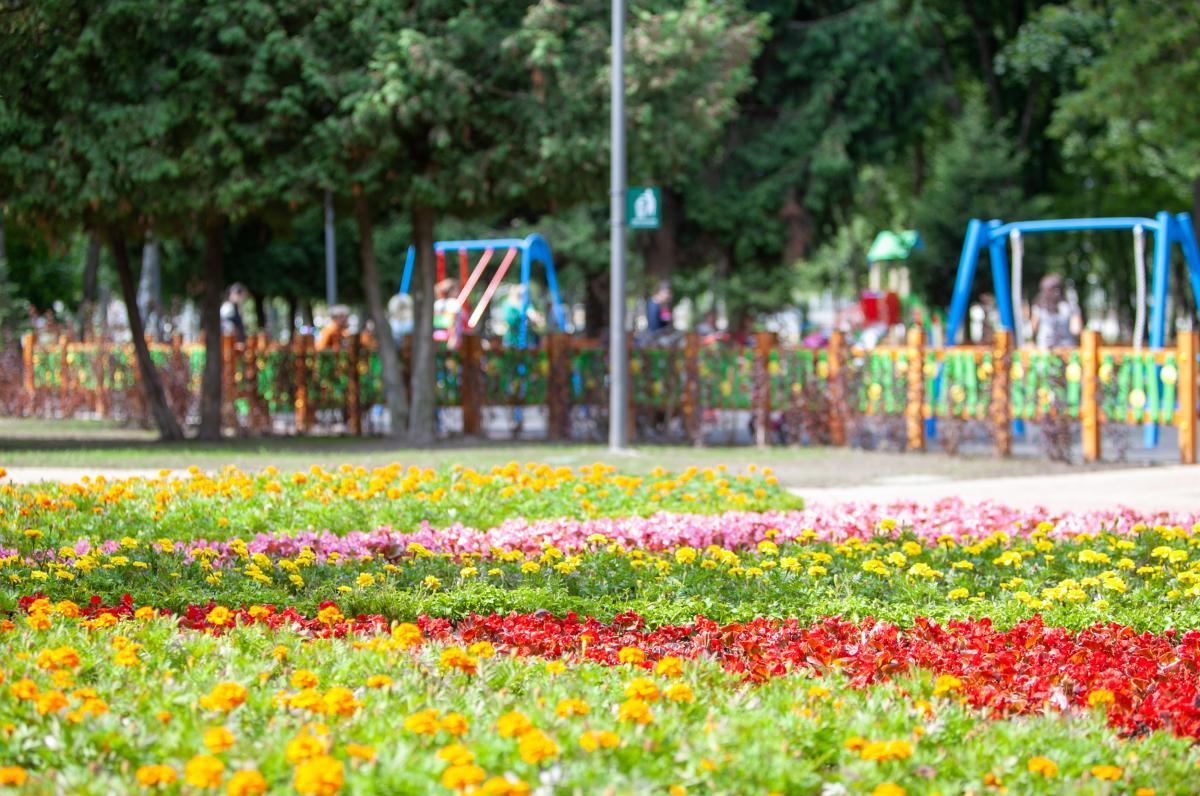Обновленный парк «Радуга» открылся на Нивках / фото КГГА