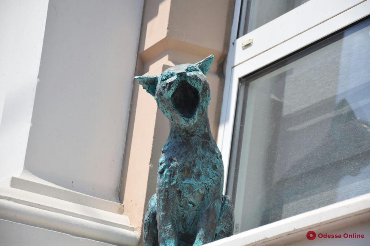Прототипи скульптур — справжні бойові вуличні коти / фото odessa.online