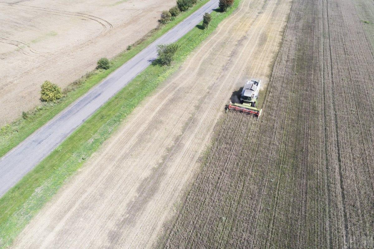 Українські аграрії почали засіви озимини / Фото УНІАН