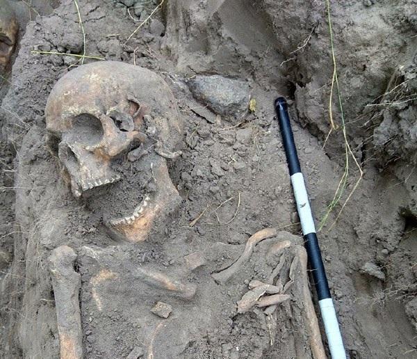 Всего было эксгумировано останки 29 человек / фото Facebook ИПО «Поиск»