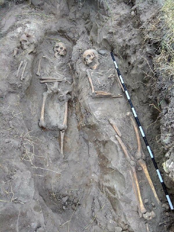 Большая часть из найденных останков – маленькиедети и женщины / фото Facebook ИПО «Поиск»
