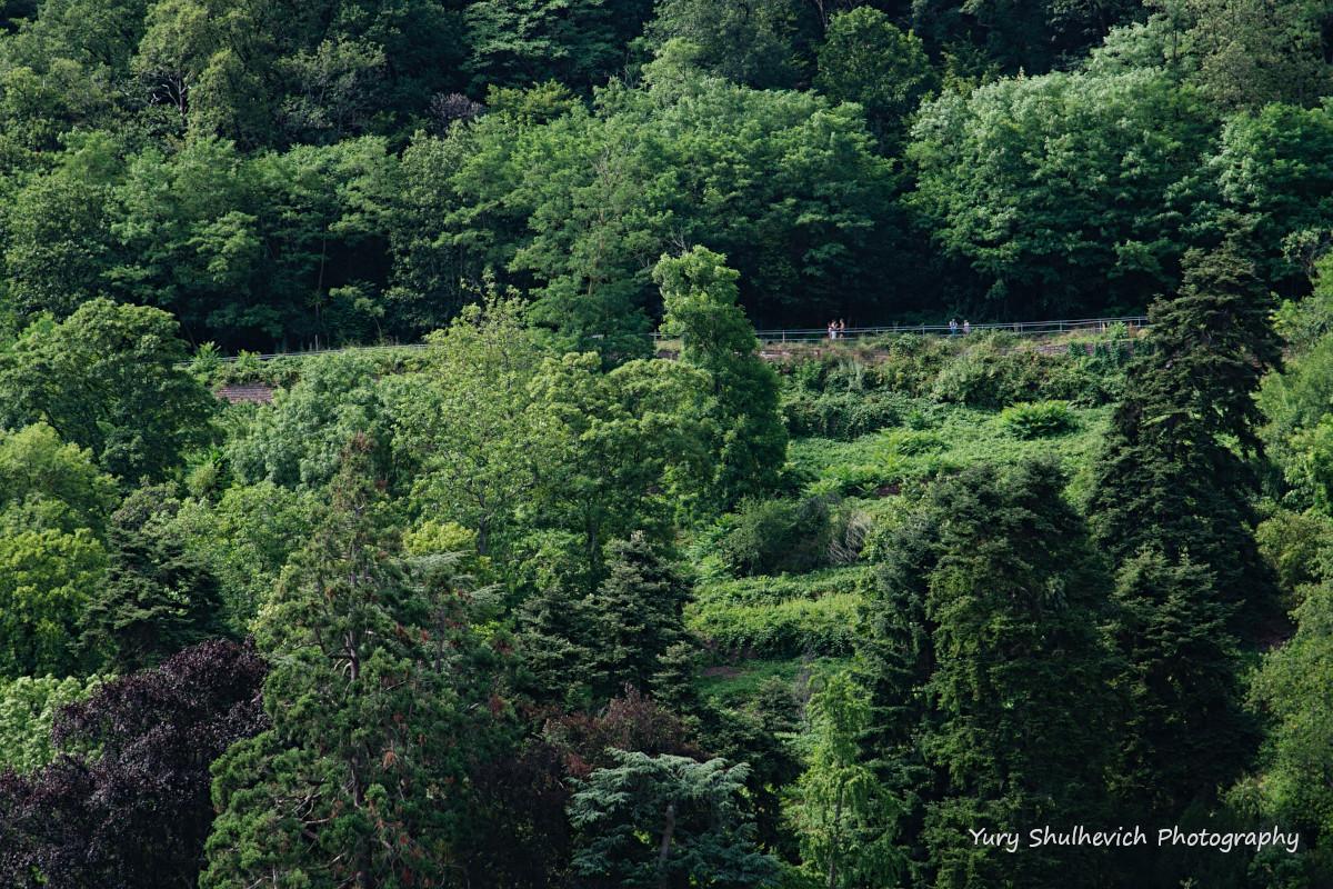 На південному схилі Гори Святих розташована «стежка філософів» / фото Yury Shulhevich