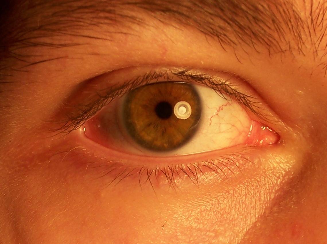 Image result for Ученые создали контактные линзы, которые могут увеличивать масштаб