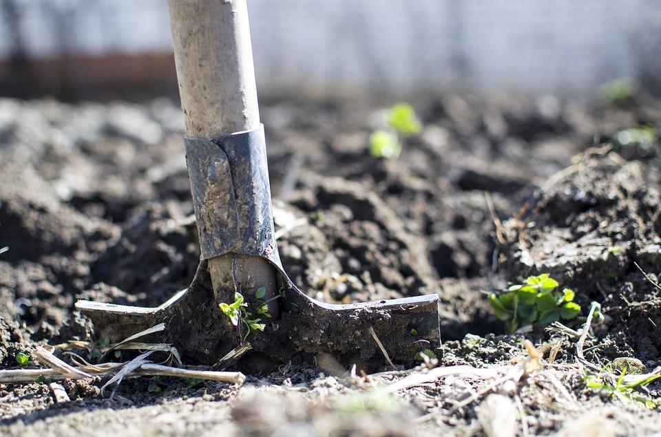 Росіянина били і змусили копати собі яму / фото - Pixabay