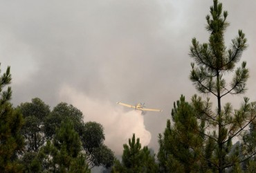 В центральной Португалии бушуют лесные пожары, пострадали 20 человек (фото)