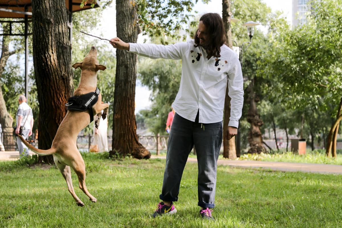 К путешествию с собакой нужно готовиться заранее / Фото УНИАН