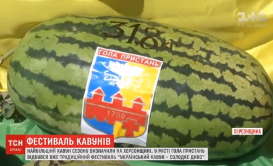 У Голій Пристані відбувся фестиваль кавунів / Скріншот, ТСН