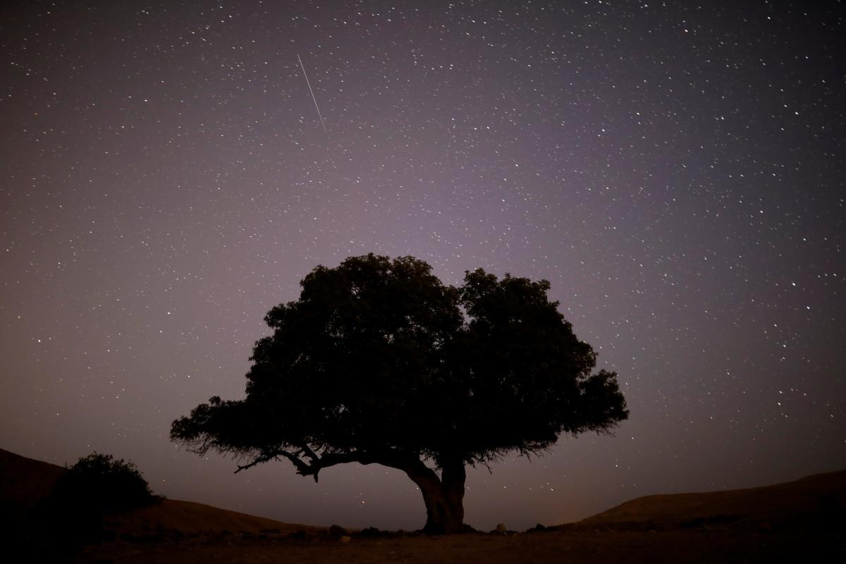 Стало известно, когда наблюдать звездопады в октябре / иллюстрацияREUTERS