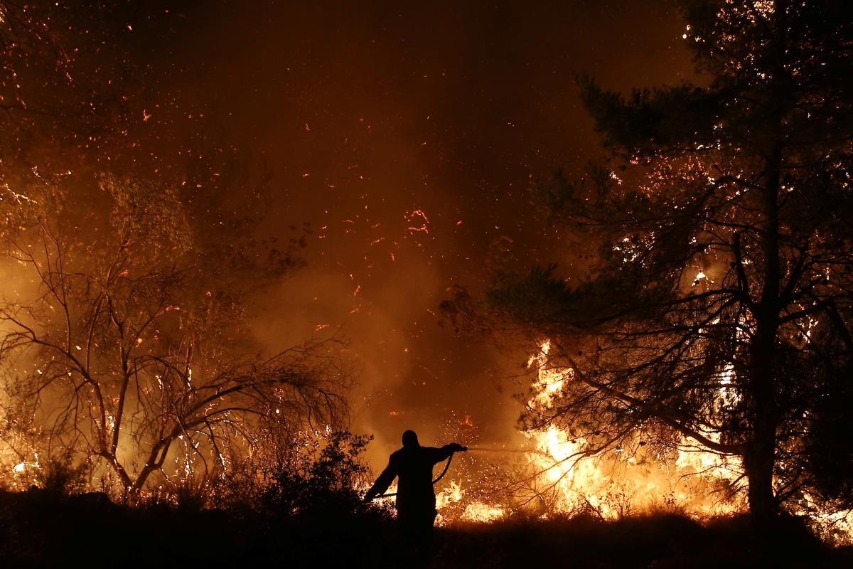 Лесной пожар в Греции / REUTERS