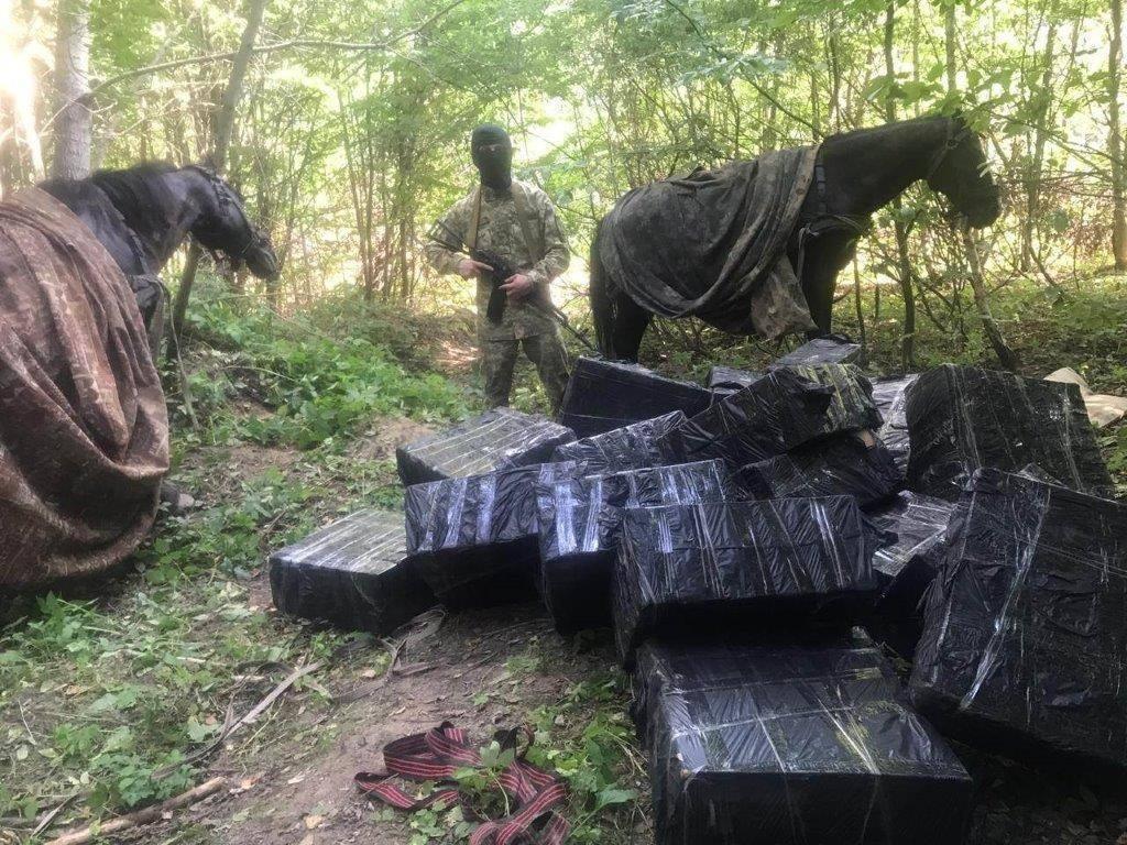На Буковині зі стріляниною затримували контрабандистів на конях / фото ДПСУ