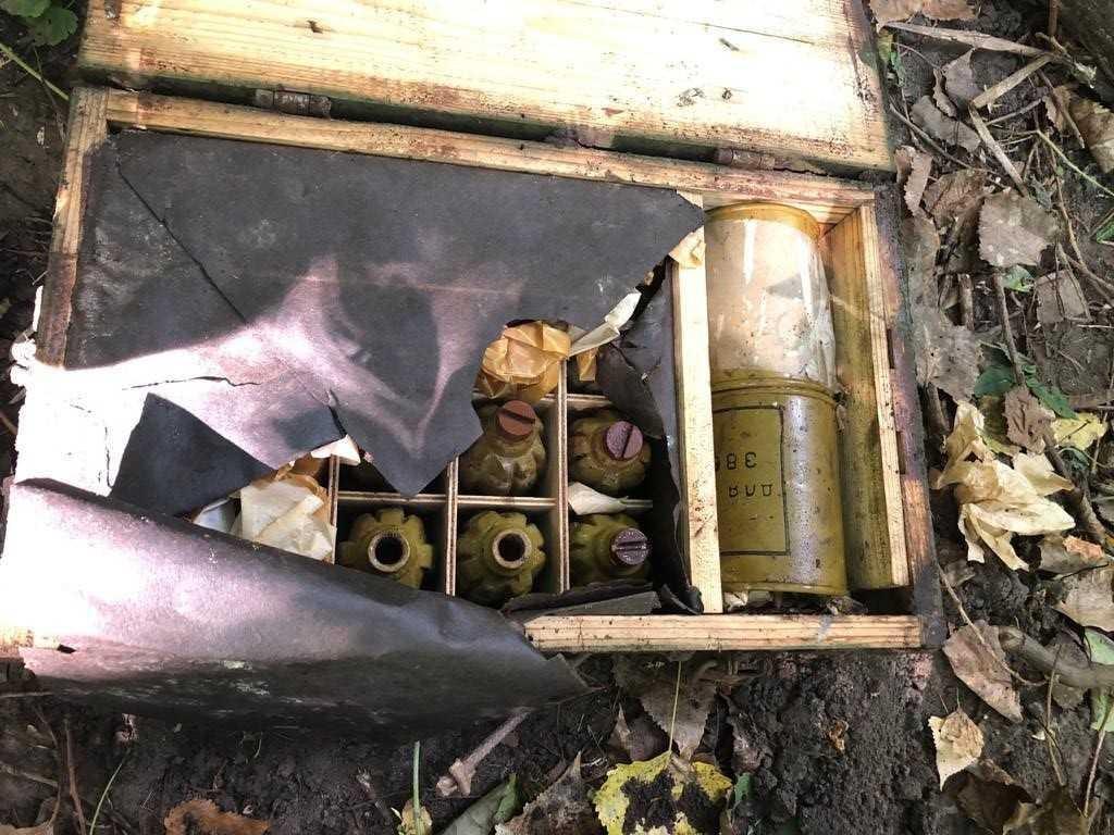 Схрон был обустроен в лесополосе / фото: пресс-служба СБУ