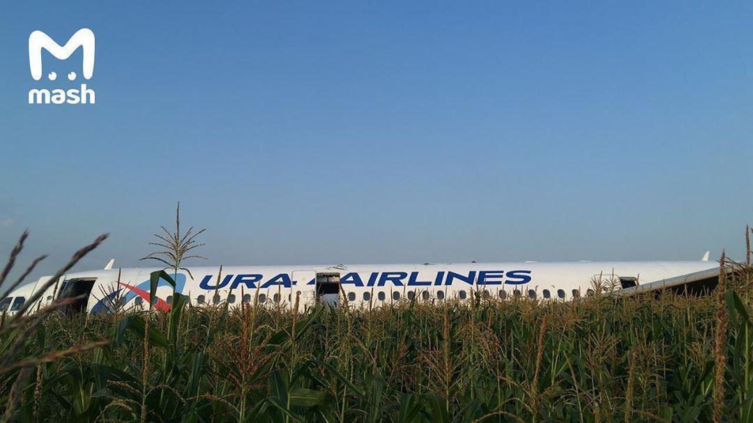 В России посреди поля приземлился самолет, летевший в Крым / фото Mash
