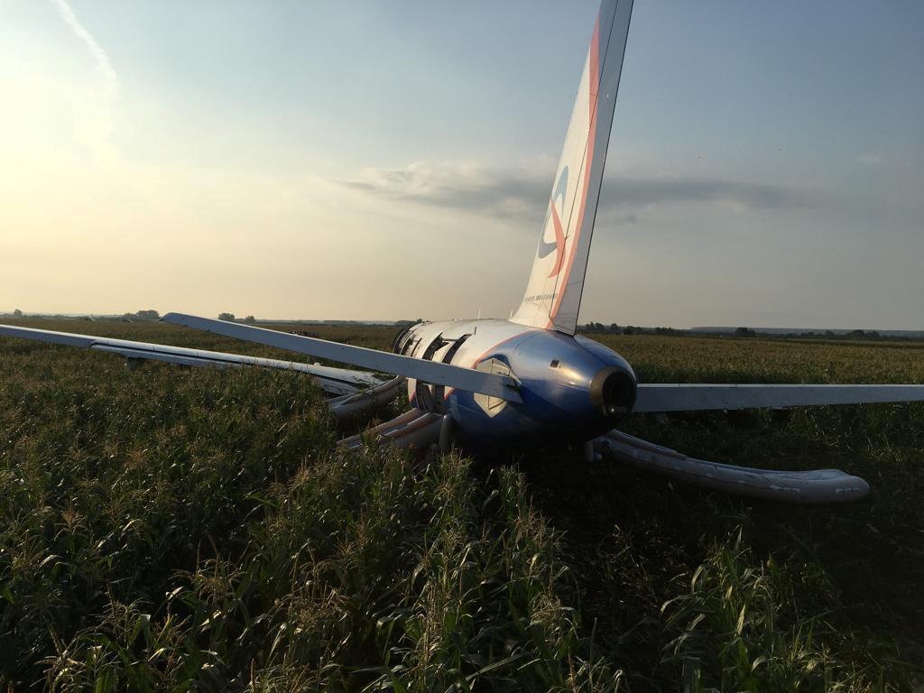 Самолет Airbus A321 после аварийной посадки в Подмосковье / REUTERS