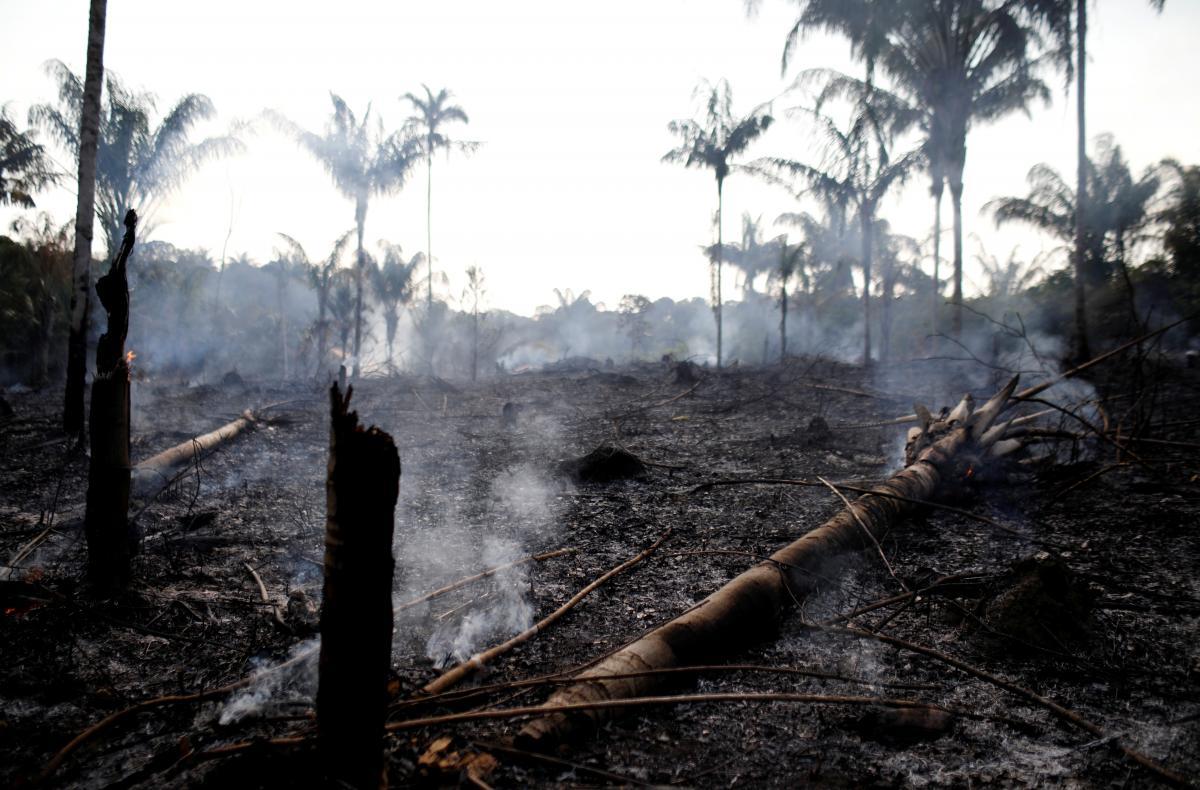 Наслідки пожеж в Амазонії / REUTERS