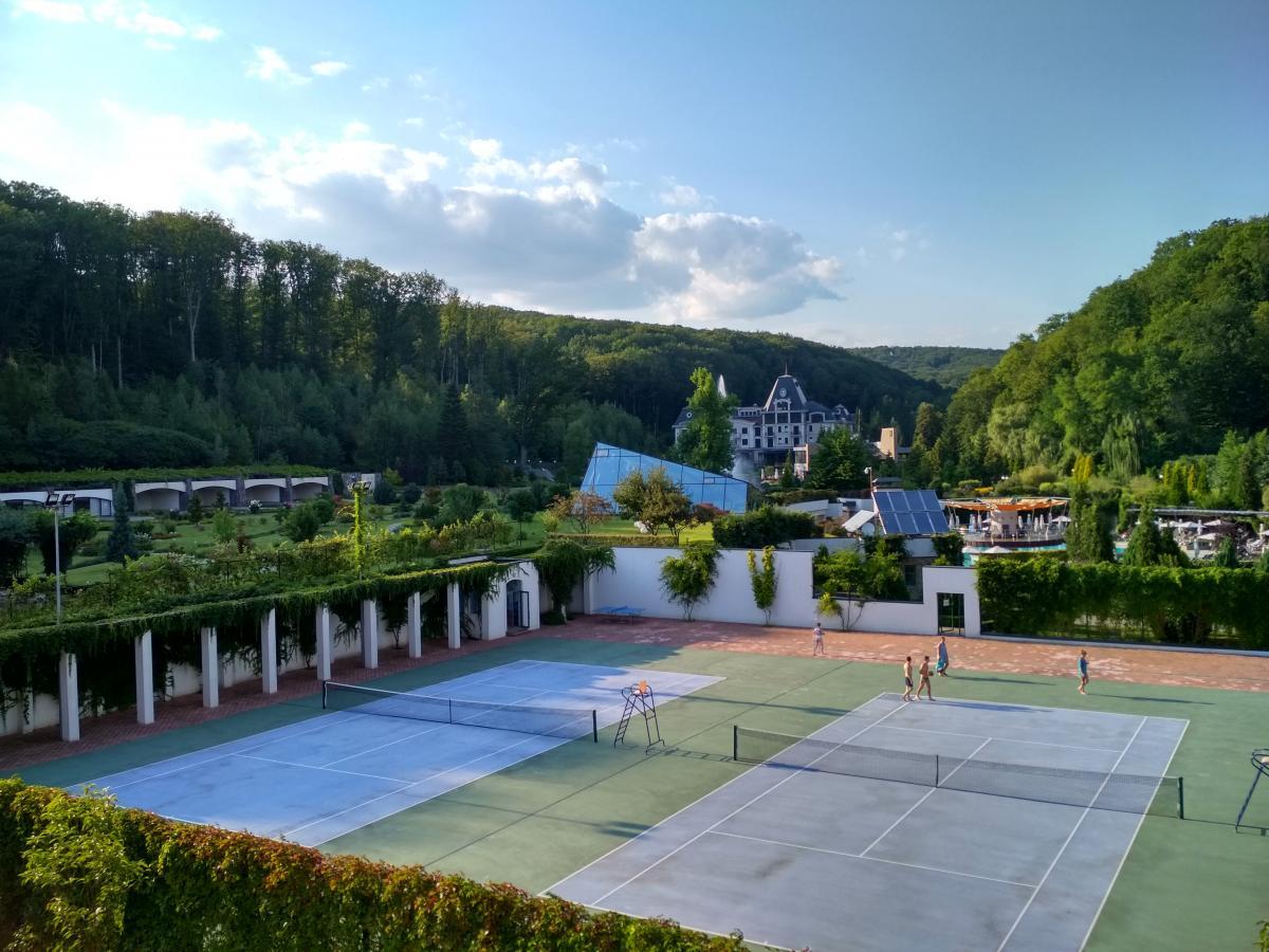 Есть теннисные корты, поля для бадминтона, волейбольная площадка / Фото УНИАН