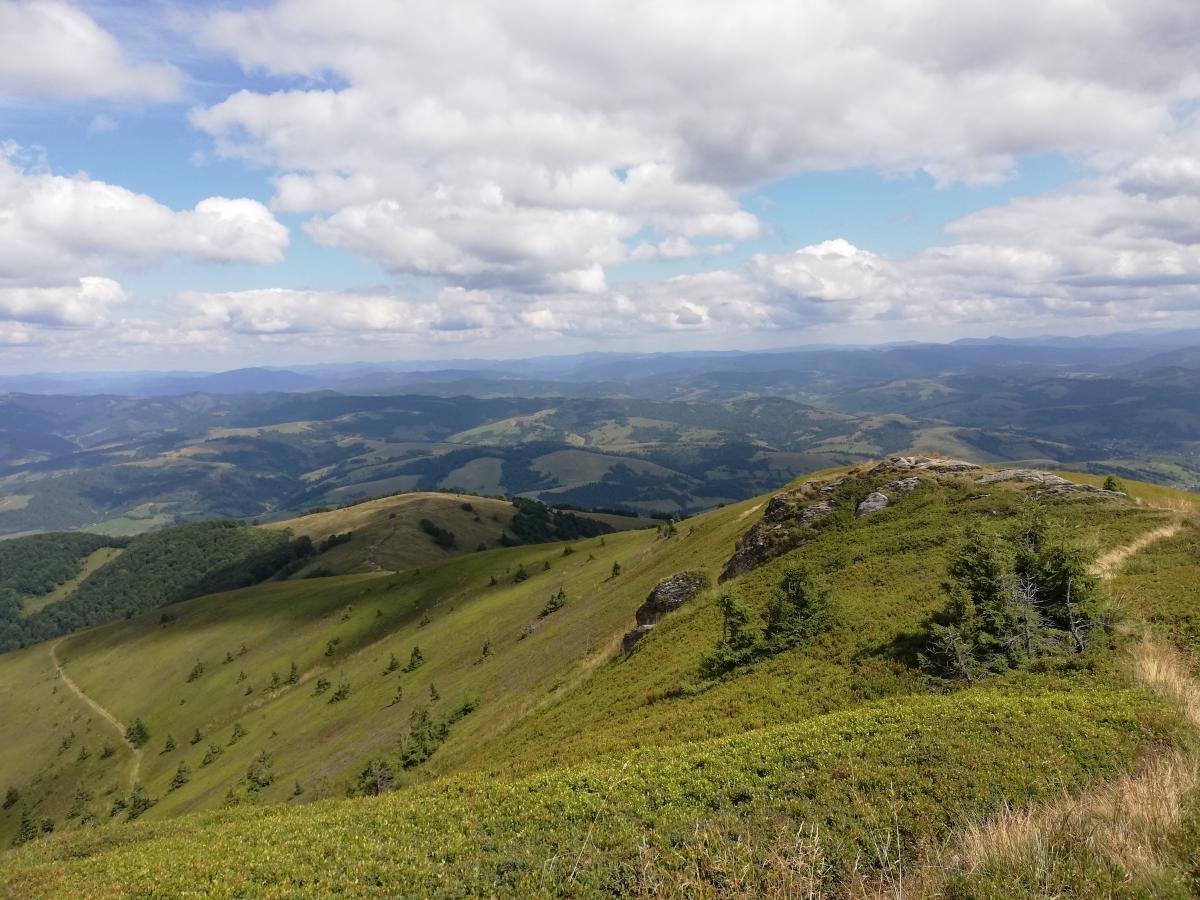 Боржава - довольно легкий для подъема горный массив / Фото Марина Григоренко