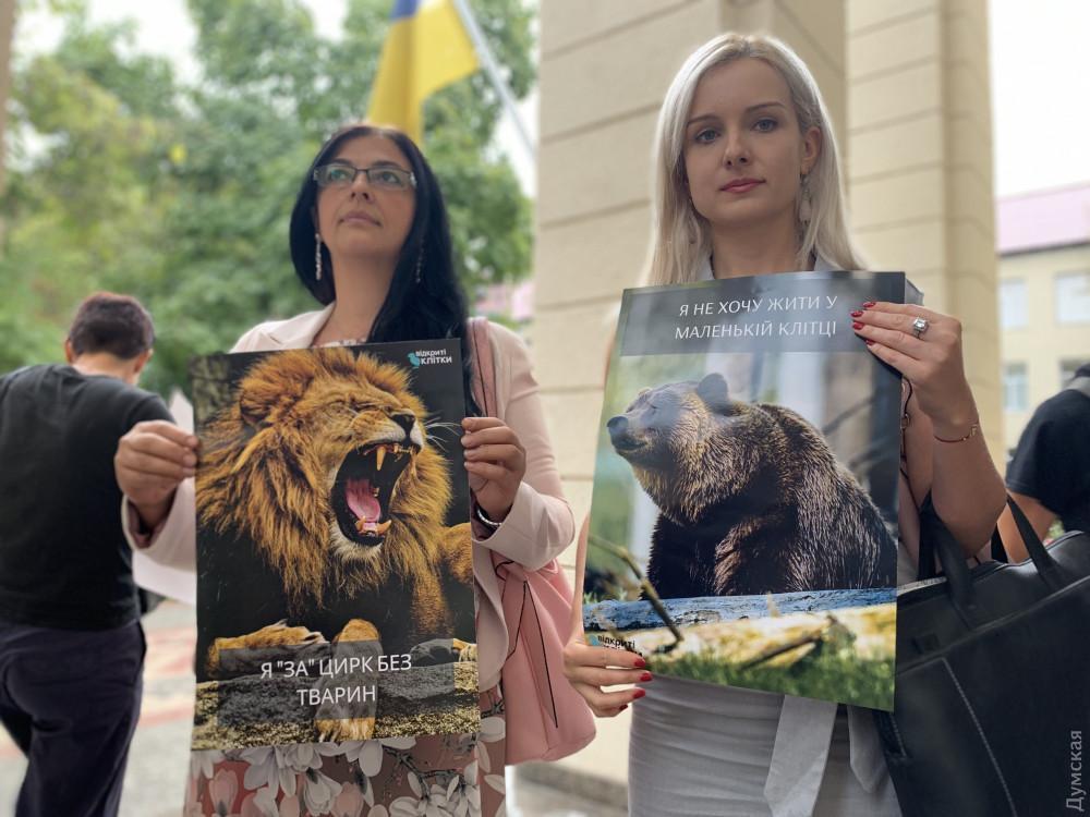 Государственная экологическая инспекция требует закрыть одесский цирк / фото Думская