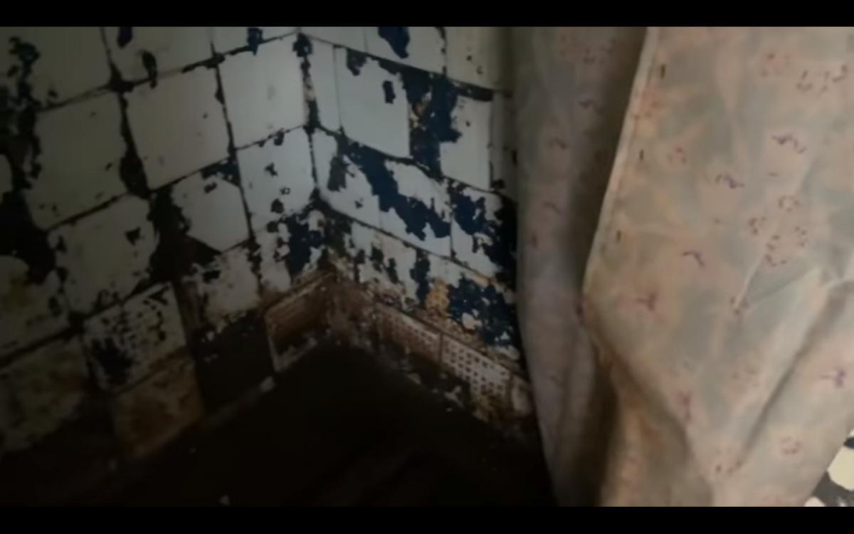 По словам журналистки,в душевой можно получить астму от плесени / скриншот из видео