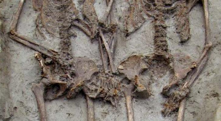 Известные скелеты, держащиеся за руки, оказались двумя мужчинами/ фото archeomodena