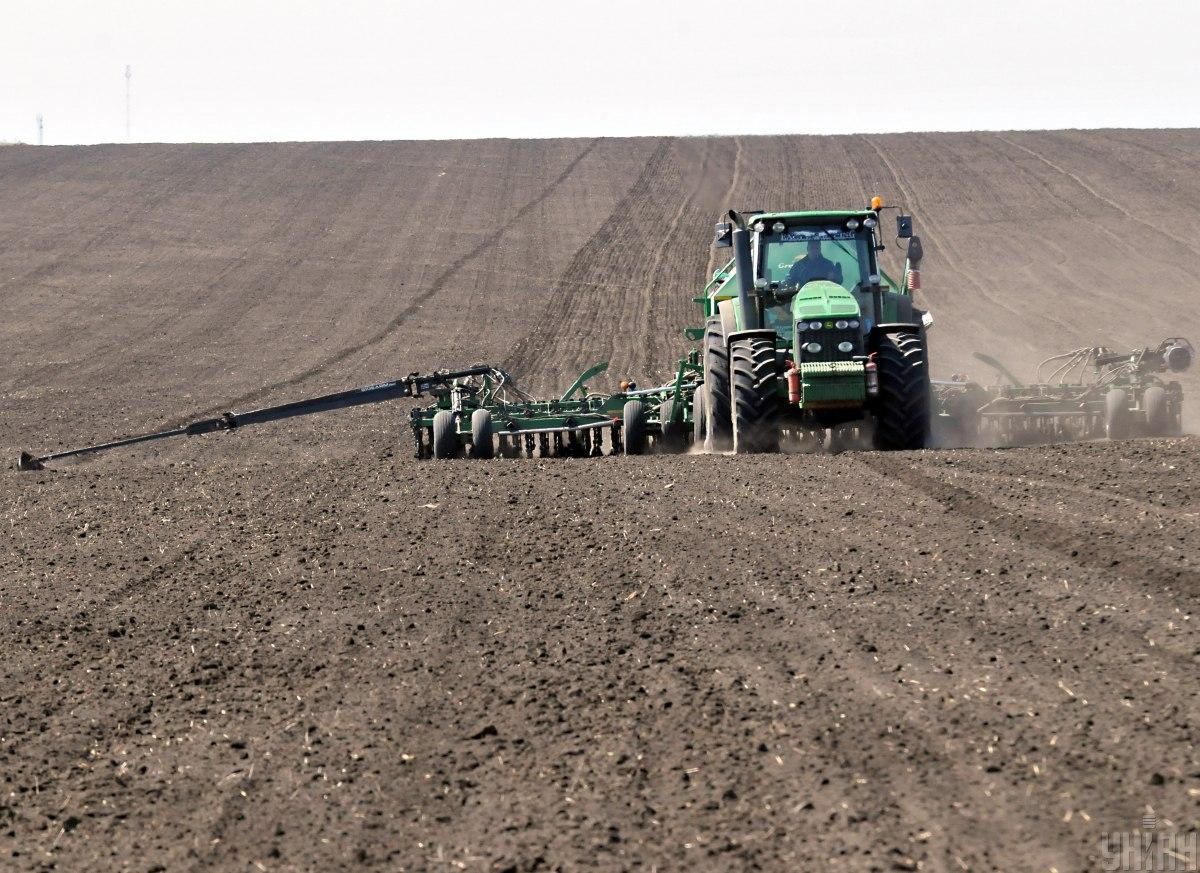 У наступному році планують запустити ринок землі / фото УНІАН