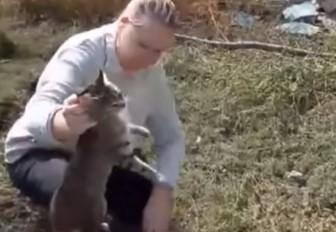 Кошку вытащили спасатели / скриншот видео ТСН