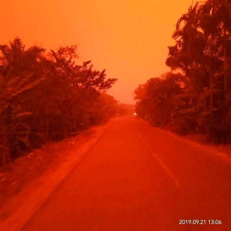 Лесные пожары окрасили небо в Индонезии в красный цвет / twitter.com/SriwijayaKu